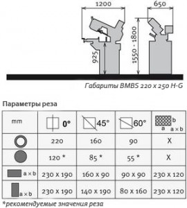 bmbs-220x250-h-g-rez