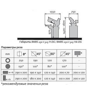 bmbs-250x315-h-dg_rez